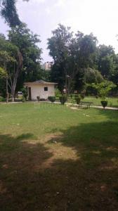 900 Sq.ft Residential Plot for Sale in Rajendra Nagar, Ghaziabad