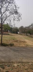 1314 Sq.ft Residential Plot for Sale in Sector 110, Gurgaon