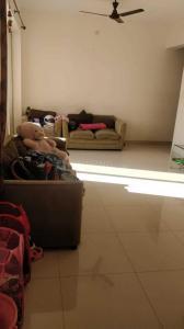 Living Room Image of PG 4749423 Wakad in Wakad