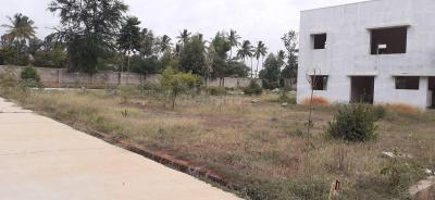 Gallery Cover Image of  Sq.ft Residential Plot for buy in Chikkabellandur for 6250000