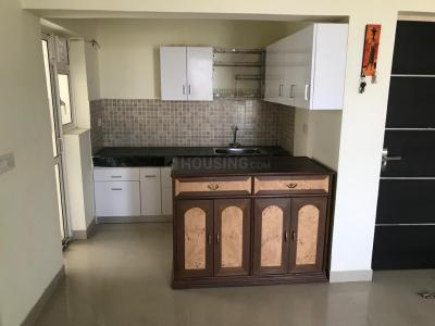 Gallery Cover Image of 927 Sq.ft 2 BHK Apartment for rent in Sector 151 for 10000