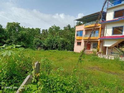 3000 Sq.ft Residential Plot for Sale in Revdanda, Raigad