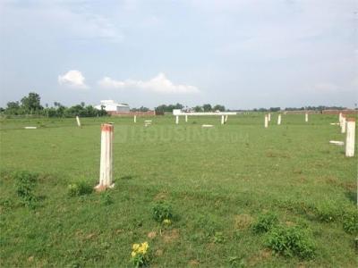 1200 Sq.ft Residential Plot for Sale in Bihta, Patna