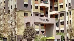 Gallery Cover Image of 1500 Sq.ft 3 BHK Apartment for rent in Magarpatta Trillium, Magarpatta City for 22000