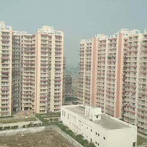 Gallery Cover Image of 1702 Sq.ft 3 BHK Apartment for rent in Sector 77 for 10500