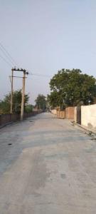 4500 Sq.ft Residential Plot for Sale in Old Delhi, New Delhi