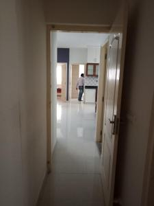 Gallery Cover Image of 1600 Sq.ft 3 BHK Apartment for rent in Shanti Nagar for 50000