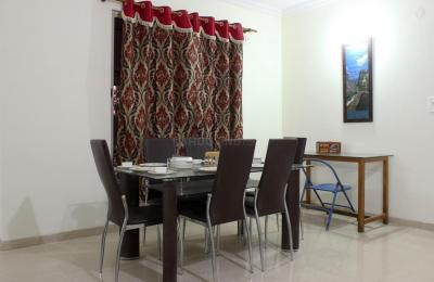 Dining Room Image of PG 4643528 Aundh in Aundh