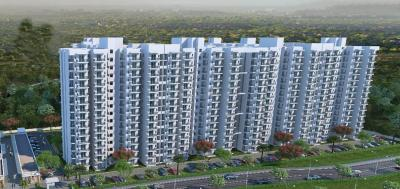 Gallery Cover Image of 1100 Sq.ft 3 BHK Apartment for buy in Sector 78 for 2582000