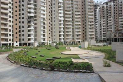 Gallery Cover Image of 425 Sq.ft 1 BHK Apartment for rent in Supertech Ecociti, Sector 137 for 10500