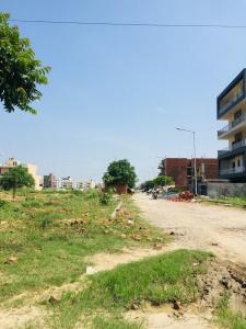 260 Sq.ft Residential Plot for Sale in Sector 75, Faridabad