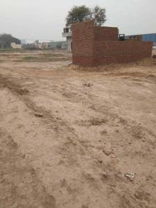 100 Sq.ft Residential Plot for Sale in Sector 43, Faridabad