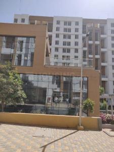 Gallery Cover Image of 1165 Sq.ft 2 BHK Apartment for rent in Ambegaon Budruk for 13000