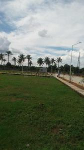 Gallery Cover Image of 1500 Sq.ft Residential Plot for buy in Hoskote for 3900000