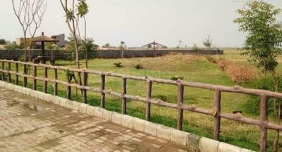 100 Sq.ft Residential Plot for Sale in Shahberi, Greater Noida
