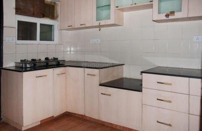 Kitchen Image of PG 4643261 Whitefield in Whitefield