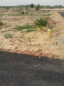 60 Sq.ft Residential Plot for Sale in Sector 28 Rohini, New Delhi
