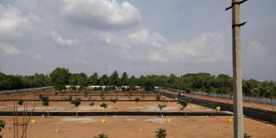 Gallery Cover Image of 1500 Sq.ft Residential Plot for buy in Chikkagubbi Village for 3300000