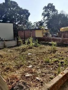 1860 Sq.ft Residential Plot for Sale in Kishanpur, Dehradun