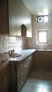 Kitchen Image of The Ochre Nest in Sector 13 Rohini