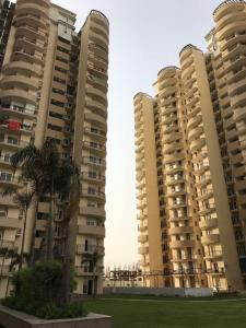 Gallery Cover Image of 1030 Sq.ft 2 BHK Apartment for rent in Victory Central, Noida Extension for 7500
