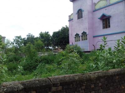 Gallery Cover Image of 1150 Sq.ft 3 BHK Apartment for buy in Madhyamgram for 2800000
