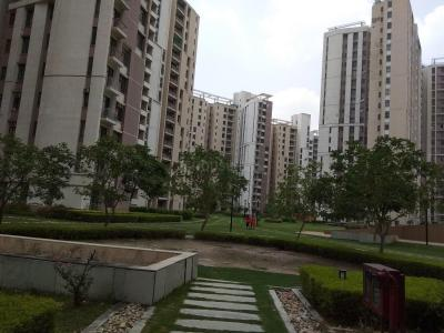 Gallery Cover Image of 1760 Sq.ft 3 BHK Apartment for rent in PI Greater Noida for 21000