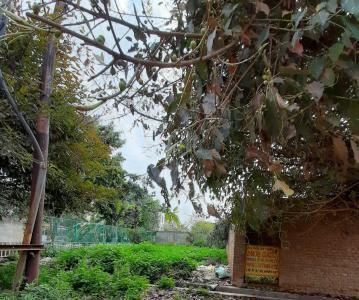 968 Sq.ft Residential Plot for Sale in Govindpuram, Ghaziabad