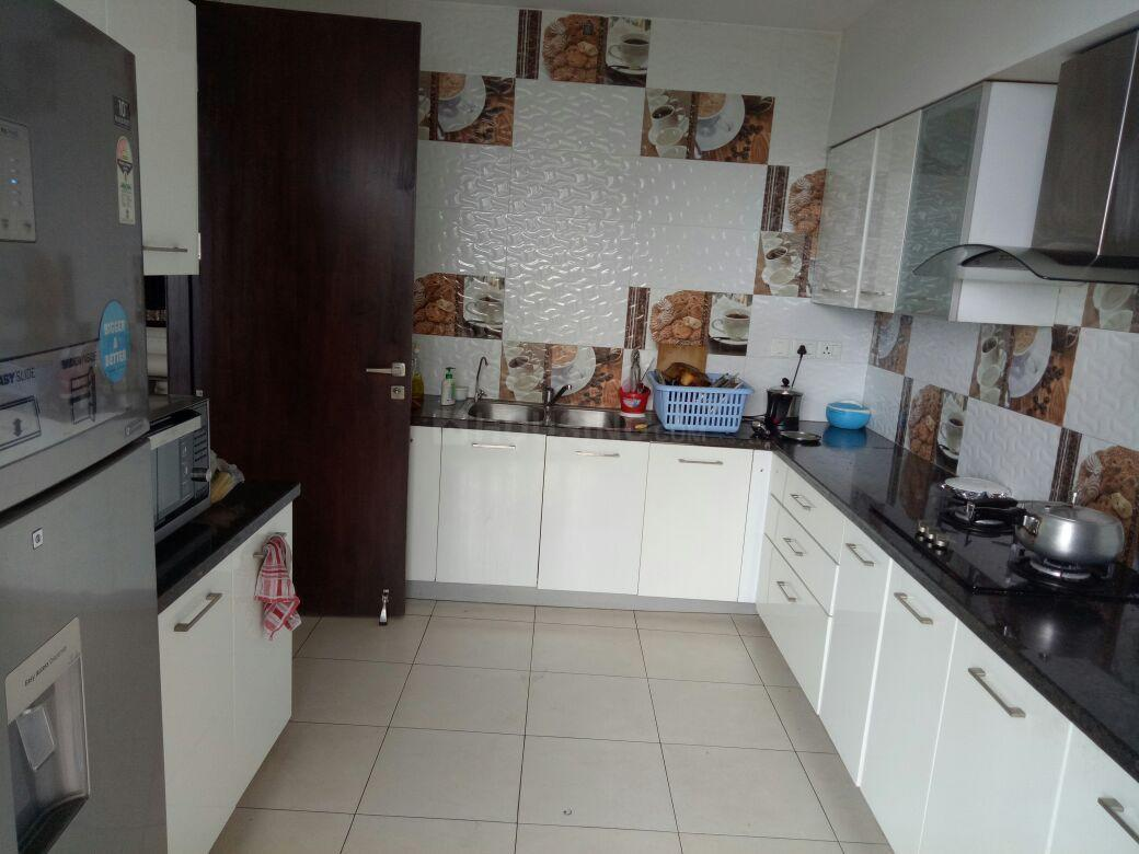 Kitchen Image of 2895 Sq.ft 3 BHK Apartment for rent in Sector 53 for 85000