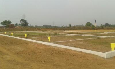 Gallery Cover Image of  Sq.ft Residential Plot for buy in Roberts Lines for 999000