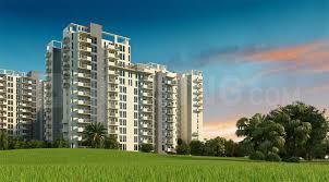 720 Sq.ft Residential Plot for Sale in Sector 17 Dwarka, New Delhi
