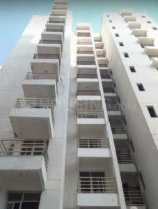 Gallery Cover Image of 1268 Sq.ft 3 BHK Apartment for rent in Sector 89 for 9500