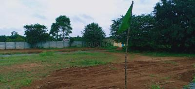 Gallery Cover Image of  Sq.ft Residential Plot for buy in Hosur for 2478000