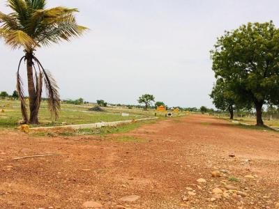 Gallery Cover Image of  Sq.ft Residential Plot for buy in Thirunindravur for 210000
