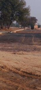 Gallery Cover Image of 900 Sq.ft Residential Plot for buy in Sector 72 for 3000000