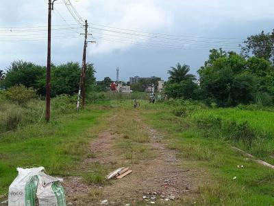 Gallery Cover Image of 720 Sq.ft Residential Plot for buy in Paschim Barisha for 800000