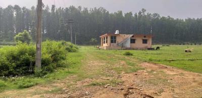 900 Sq.ft Residential Plot for Sale in Prem Nagar, Dehradun