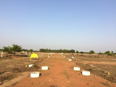 Gallery Cover Image of 2106 Sq.ft Residential Plot for buy in Thirunindravur for 737100