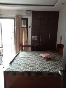 Gallery Cover Image of 650 Sq.ft 1 RK Apartment for rent in Kalkaji for 16500