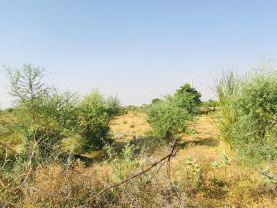 680 Sq.ft Residential Plot for Sale in Mansarovar, Jaipur
