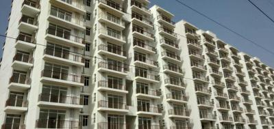 Gallery Cover Image of 510 Sq.ft 1 BHK Apartment for buy in Sector 36 for 1452500