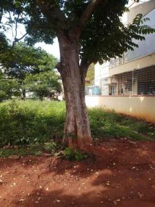 1200 Sq.ft Residential Plot for Sale in Syndicate Bank Employees Housing Society Layout, Bangalore
