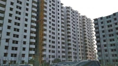 Gallery Cover Image of 554 Sq.ft 1 BHK Apartment for rent in Tulip Lemon, Sector 69 for 12000