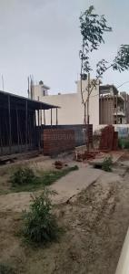 1660 Sq.ft Residential Plot for Sale in Sector 64, Faridabad