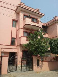 Gallery Cover Image of 1050 Sq.ft 2 BHK Independent Floor for rent in Sector 49 for 20000