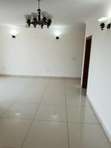 Gallery Cover Image of 1356 Sq.ft 3 BHK Apartment for rent in Sector 78 for 13500
