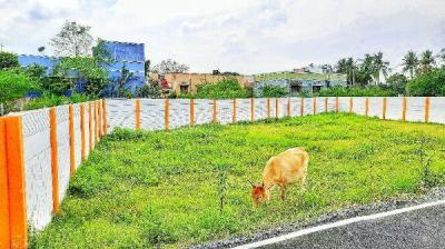 1000 Sq.ft Residential Plot for Sale in Pudupakkam, Chennai