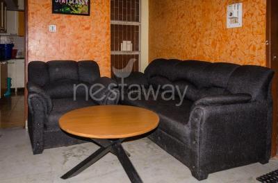 Living Room Image of PG 4642788 Vasundhara Enclave in Vasundhara Enclave