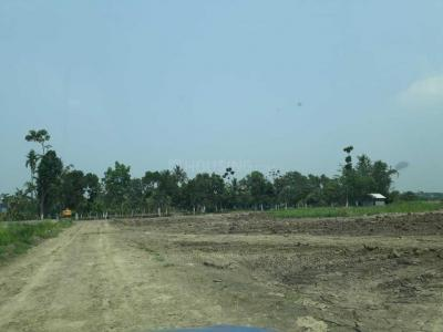 Gallery Cover Image of  Sq.ft Residential Plot for buy in Barrackpore for 2200000