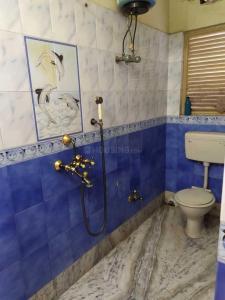 पीजी 4272239 टागोर पार्क इन टागोर पार्क के बाथरूम की तस्वीर
